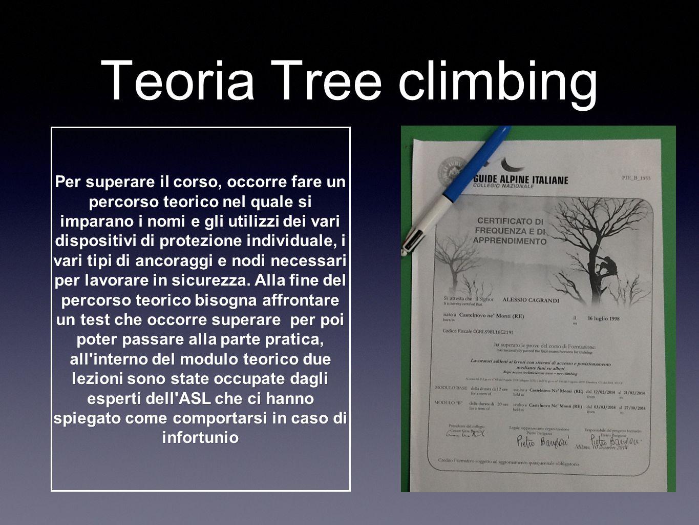Test pratico Per superare l esame di pratica è necessario sapersi muovere sulla chioma dell albero,dimostrare di saper salire e scendere in sicurezza usando gli ancoraggi.