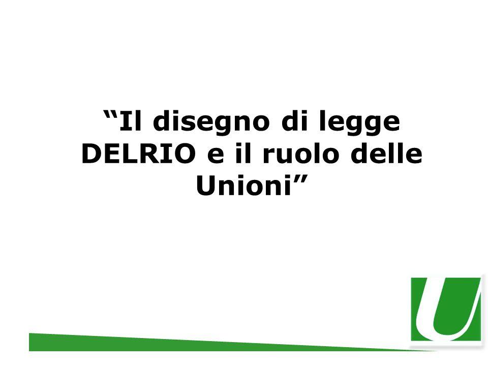"""""""Il disegno di legge DELRIO e il ruolo delle Unioni"""""""
