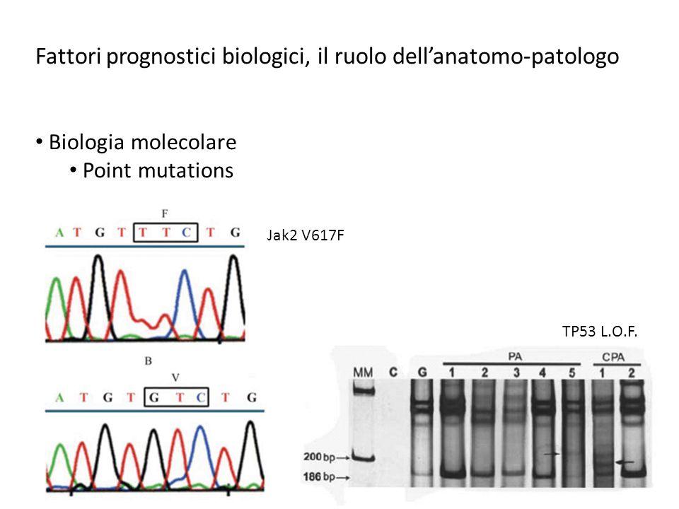 Fattori prognostici biologici, il ruolo dell'anatomo-patologo Biologia molecolare Point mutations Jak2 V617F TP53 L.O.F.