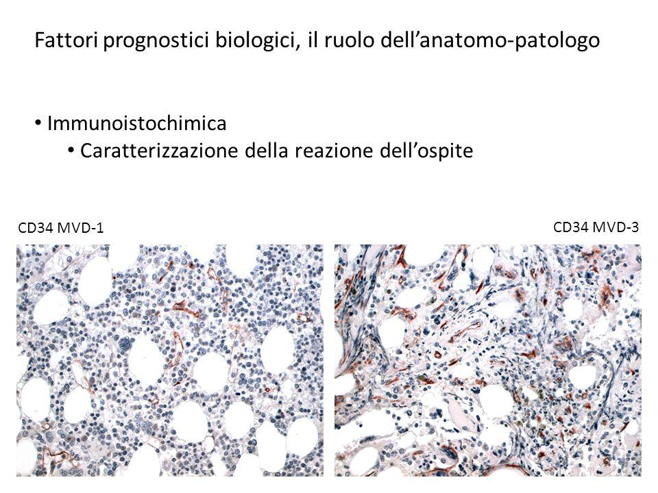 Fattori prognostici biologici, il ruolo dell'anatomo-patologo Citogenetica Aberrazioni citogenetiche ricorrenti t(15:17) PML-RARa