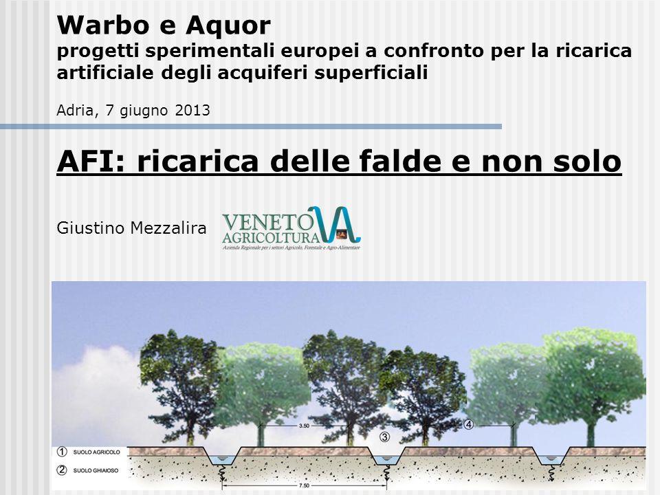AFI: ricarica delle falde e non solo Giustino Mezzalira Warbo e Aquor progetti sperimentali europei a confronto per la ricarica artificiale degli acqu