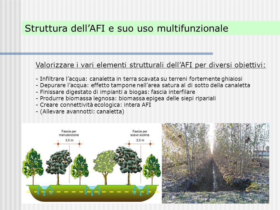 Struttura dell'AFI e suo uso multifunzionale Valorizzare i vari elementi strutturali dell'AFI per diversi obiettivi: - Infiltrare l'acqua: canaletta i