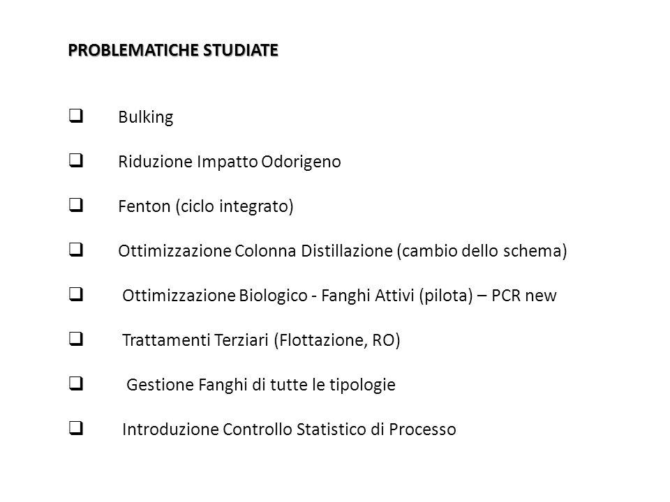 PROBLEMATICHE STUDIATE  Bulking  Riduzione Impatto Odorigeno  Fenton (ciclo integrato)  Ottimizzazione Colonna Distillazione (cambio dello schema)