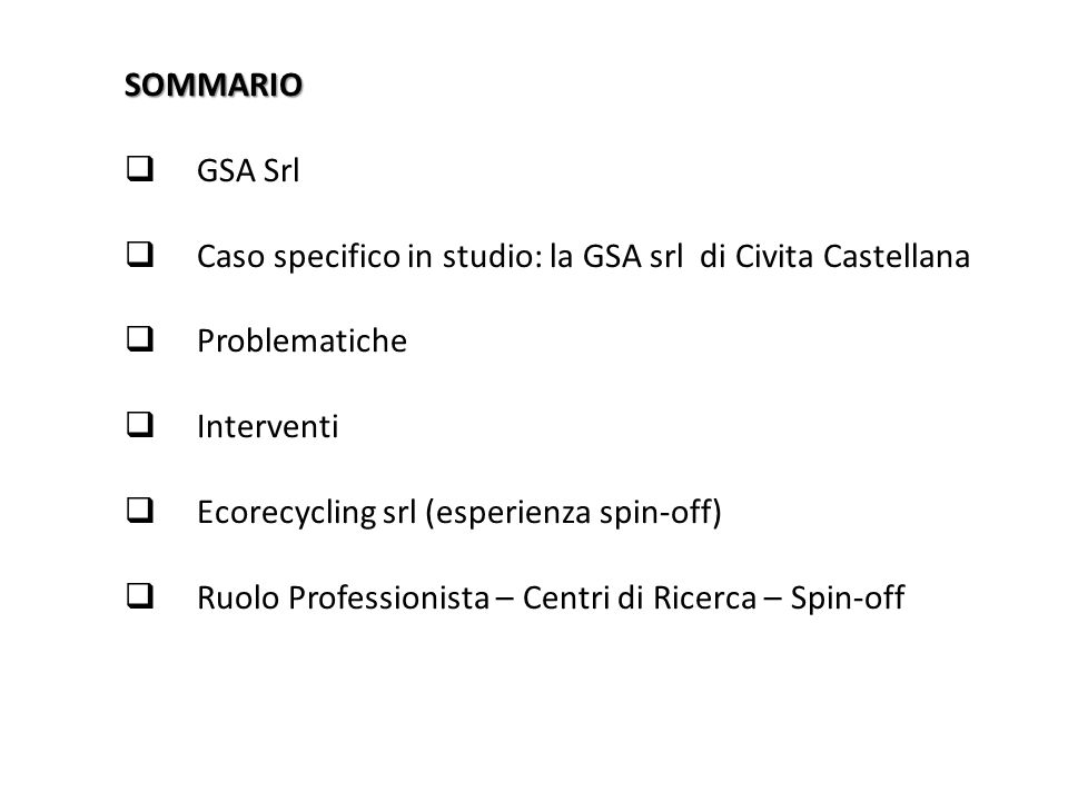 SOMMARIO  GSA Srl  Caso specifico in studio: la GSA srl di Civita Castellana  Problematiche  Interventi  Ecorecycling srl (esperienza spin-off) 