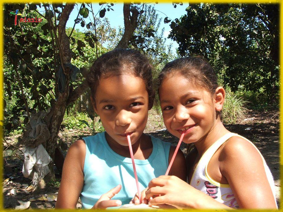 La missione «a due a due» Esperienze di gruppo Ruolo della Parrocchia Esempio di comunità adulte  La comunità del popolo di Gesù… (cfr. At 18,9-11)