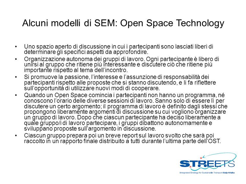 Alcuni modelli di SEM: Open Space Technology Uno spazio aperto di discussione in cui i partecipanti sono lasciati liberi di determinare gli specifici aspetti da approfondire.