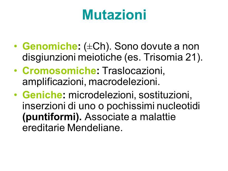 Mutazioni Genomiche: (±Ch). Sono dovute a non disgiunzioni meiotiche (es. Trisomia 21). Cromosomiche: Traslocazioni, amplificazioni, macrodelezioni. G