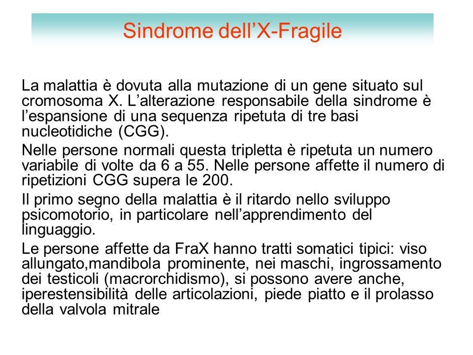 Sindrome dell'X-Fragile La malattia è dovuta alla mutazione di un gene situato sul cromosoma X. L'alterazione responsabile della sindrome è l'espansio