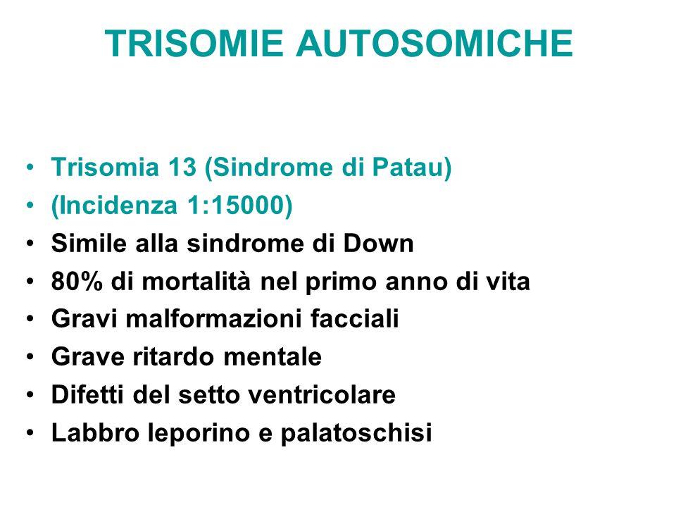 TRISOMIE AUTOSOMICHE Trisomia 13 (Sindrome di Patau) (Incidenza 1:15000) Simile alla sindrome di Down 80% di mortalità nel primo anno di vita Gravi ma