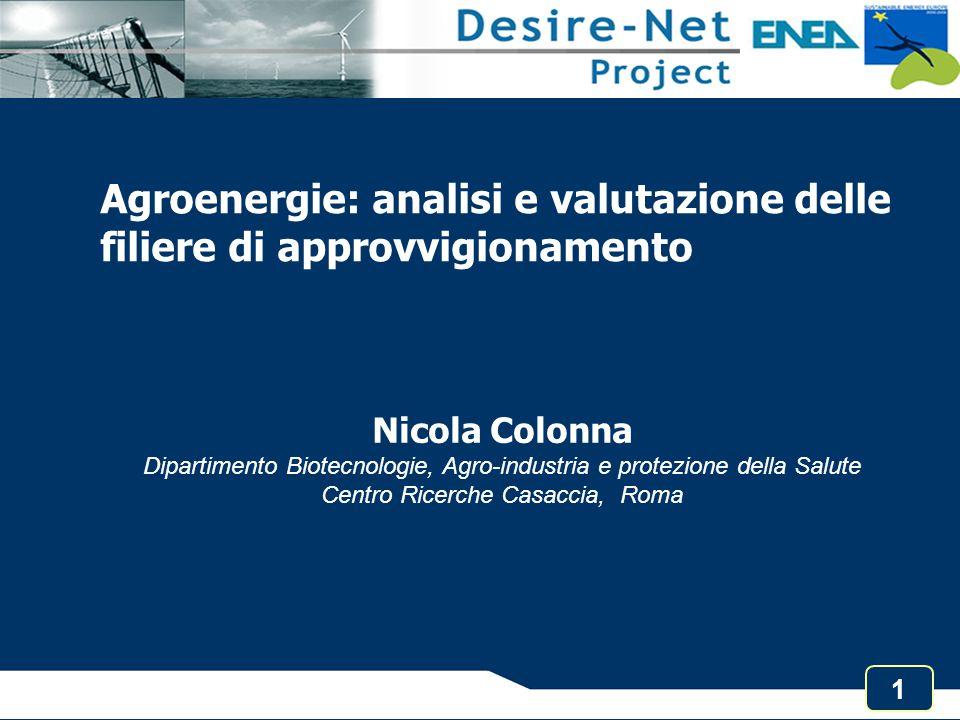 1 Agroenergie: analisi e valutazione delle filiere di approvvigionamento Nicola Colonna Dipartimento Biotecnologie, Agro-industria e protezione della
