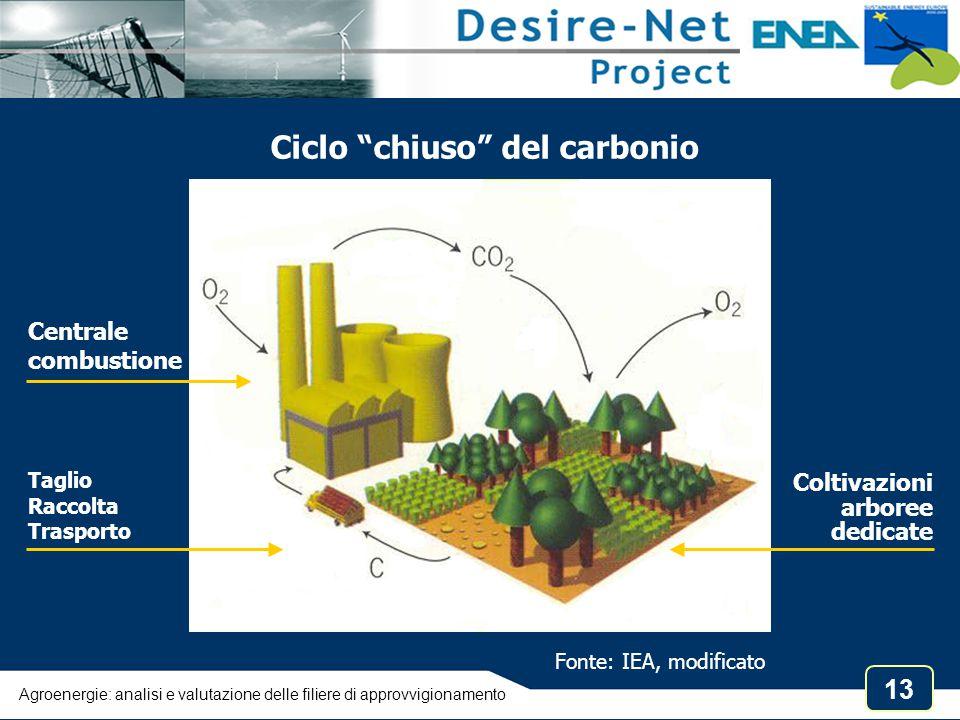 """13 Ciclo """"chiuso"""" del carbonio Centrale combustione Taglio Raccolta Trasporto Fonte: IEA, modificato Coltivazioni arboree dedicate Agroenergie: analis"""