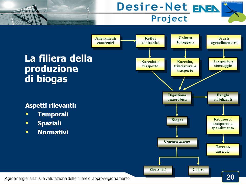 20 La filiera della produzione di biogas Reflui zootecnici Raccolta e trasporto Raccolta e trasporto Digestione anaerobica Biogas Cogenerazione Coltur