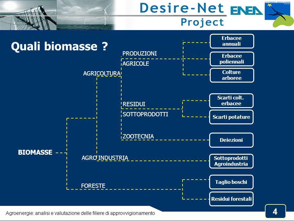 15 Agroenergie: analisi e valutazione delle filiere di approvvigionamento da: ENEA, 1999 Operazioni colturali per l'impianto e la crescita di una coltura arborea specializzata a fini energetici Consumi energia e risorse