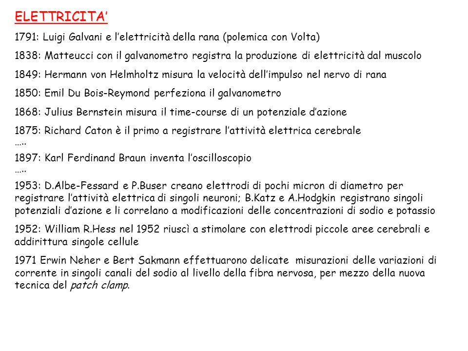 ELETTRICITA' 1791: Luigi Galvani e l'elettricità della rana (polemica con Volta) 1838: Matteucci con il galvanometro registra la produzione di elettri
