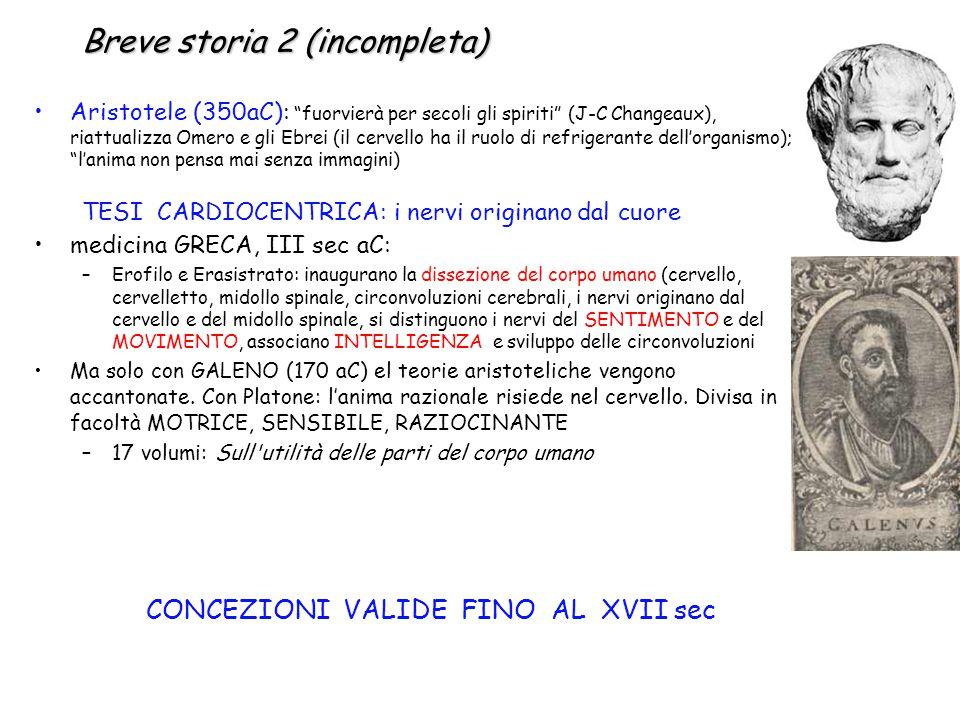 """Breve storia 2 (incompleta) Aristotele (350aC): """"fuorvierà per secoli gli spiriti"""" (J-C Changeaux), riattualizza Omero e gli Ebrei (il cervello ha il"""