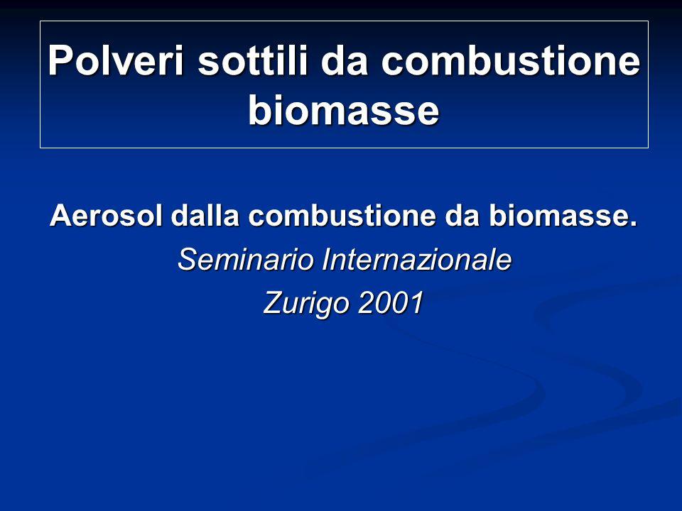 Polveri sottili da combustione biomasse Aerosol dalla combustione da biomasse.