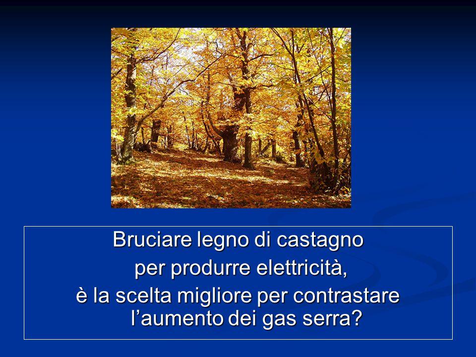 Bruciare legno di castagno per produrre elettricità, è la scelta migliore per contrastare l'aumento dei gas serra?