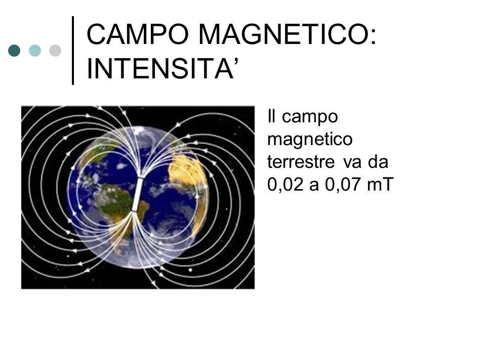 CAMPO MAGNETICO: INTENSITA' Il campo magnetico terrestre va da 0,02 a 0,07 mT