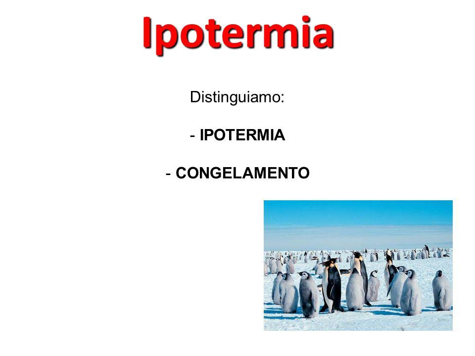 Distinguiamo: - IPOTERMIA - CONGELAMENTOIpotermia