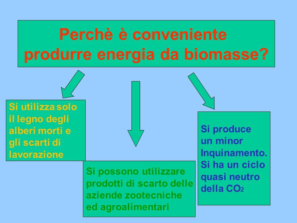Perchè è conveniente produrre energia da biomasse.
