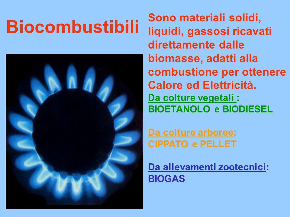 Biocombustibili Sono materiali solidi, liquidi, gassosi ricavati direttamente dalle biomasse, adatti alla combustione per ottenere Calore ed Elettricità.