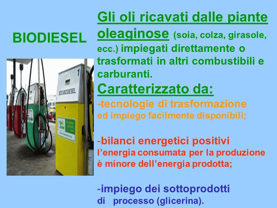 Gli oli ricavati dalle piante oleaginose (soia, colza, girasole, ecc.) impiegati direttamente o trasformati in altri combustibili e carburanti.
