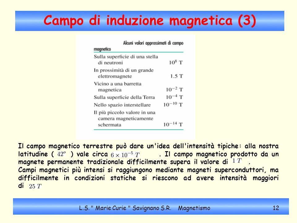 Campo di induzione magnetica (3) Il campo magnetico terrestre può dare un'idea dell'intensità tipiche: alla nostra latitudine ( ) vale circa. Il campo