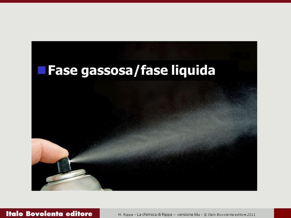M. Rippa – La chimica di Rippa – versione blu - © Italo Bovolenta editore 2011 Fase gassosa/fase liquida