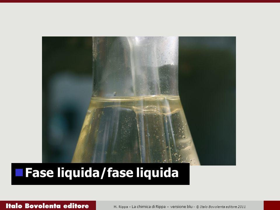 M. Rippa – La chimica di Rippa – versione blu - © Italo Bovolenta editore 2011 Fase liquida/fase liquida