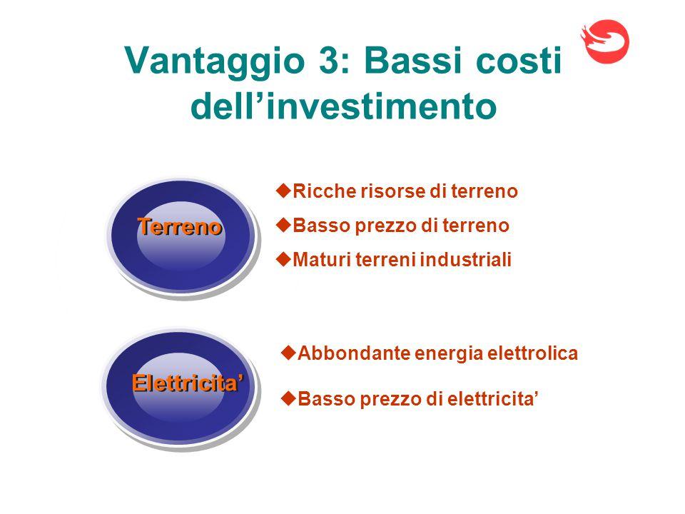 Vantaggio 3: Bassi costi dell'investimento Elettricita' Terreno  Ricche risorse di terreno  Basso prezzo di terreno  Maturi terreni industriali  Abbondante energia elettrolica  Basso prezzo di elettricita'