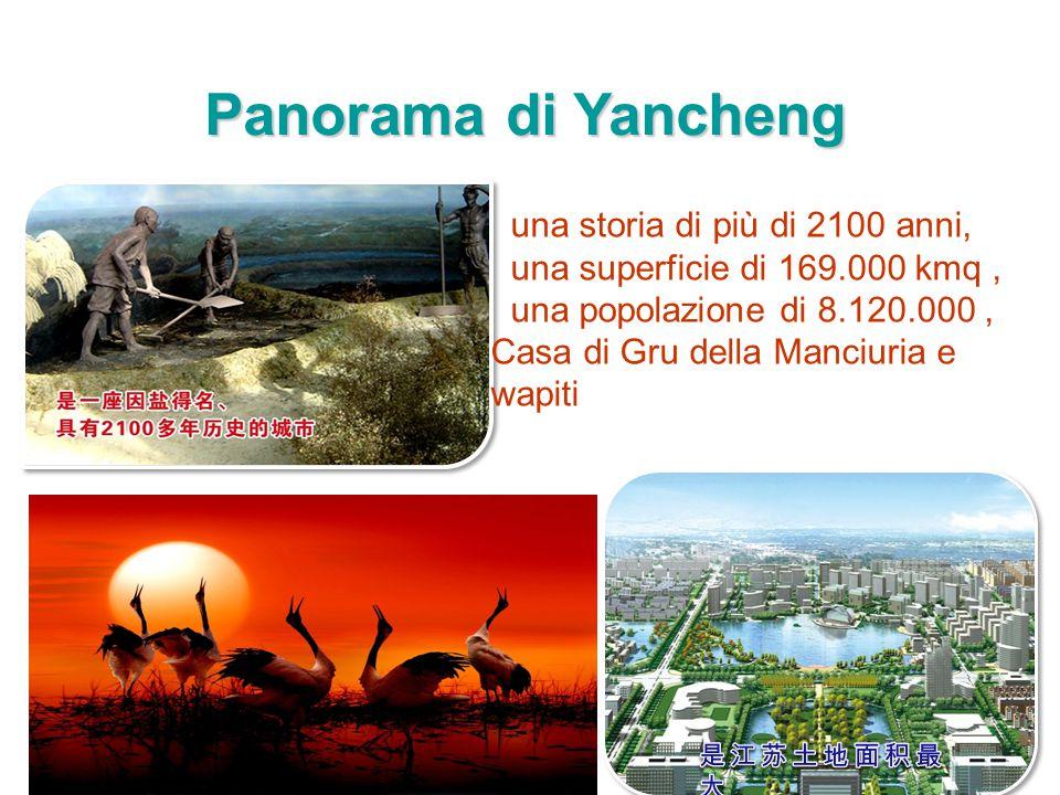 Panorama di Yancheng una storia di più di 2100 anni, una superficie di 169.000 kmq, una popolazione di 8.120.000, Casa di Gru della Manciuria e wapiti