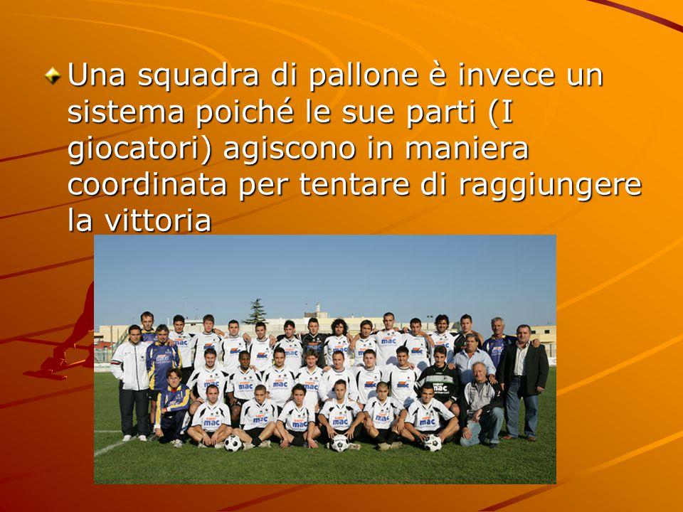 Una squadra di pallone è invece un sistema poiché le sue parti (I giocatori) agiscono in maniera coordinata per tentare di raggiungere la vittoria