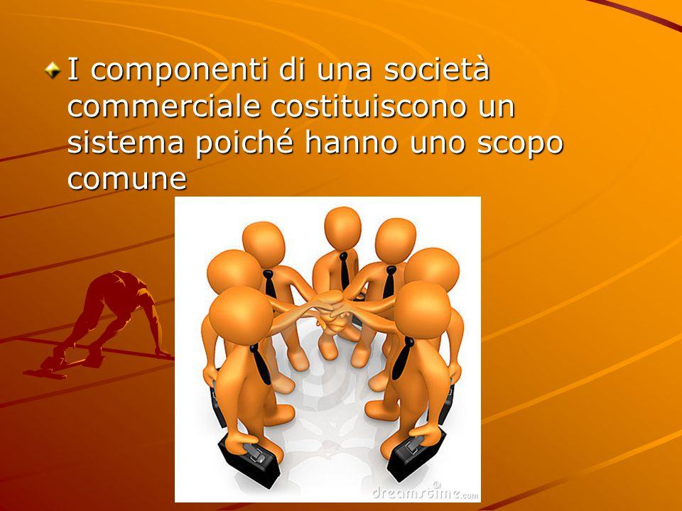 I componenti di una società commerciale costituiscono un sistema poiché hanno uno scopo comune
