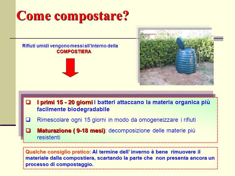 Come compostare? COMPOSTIERA Rifiuti umidi vengono messi all'interno della COMPOSTIERA  I primi 15 - 20 giorni  I primi 15 - 20 giorni i batteri att