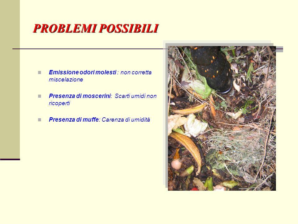 PROBLEMI POSSIBILI Emissione odori molesti : non corretta miscelazione Presenza di moscerini: Scarti umidi non ricoperti Presenza di muffe: Carenza di