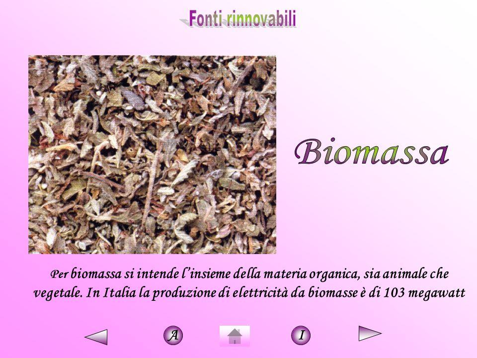 Per biomassa si intende l'insieme della materia organica, sia animale che vegetale. In Italia la produzione di elettricità da biomasse è di 103 megawa
