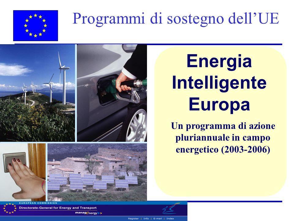 Programmi di sostegno dell'UE Energia Intelligente Europa Un programma di azione pluriannuale in campo energetico (2003-2006)