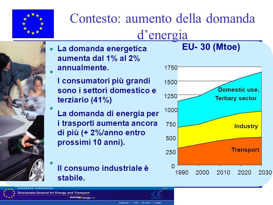 Contesto: aumento della domanda d'energia 0 250 500 750 1000 1250 1500 1750 1990200020102020 2030 Industry Transport Domestic use, Tertiary sector Il