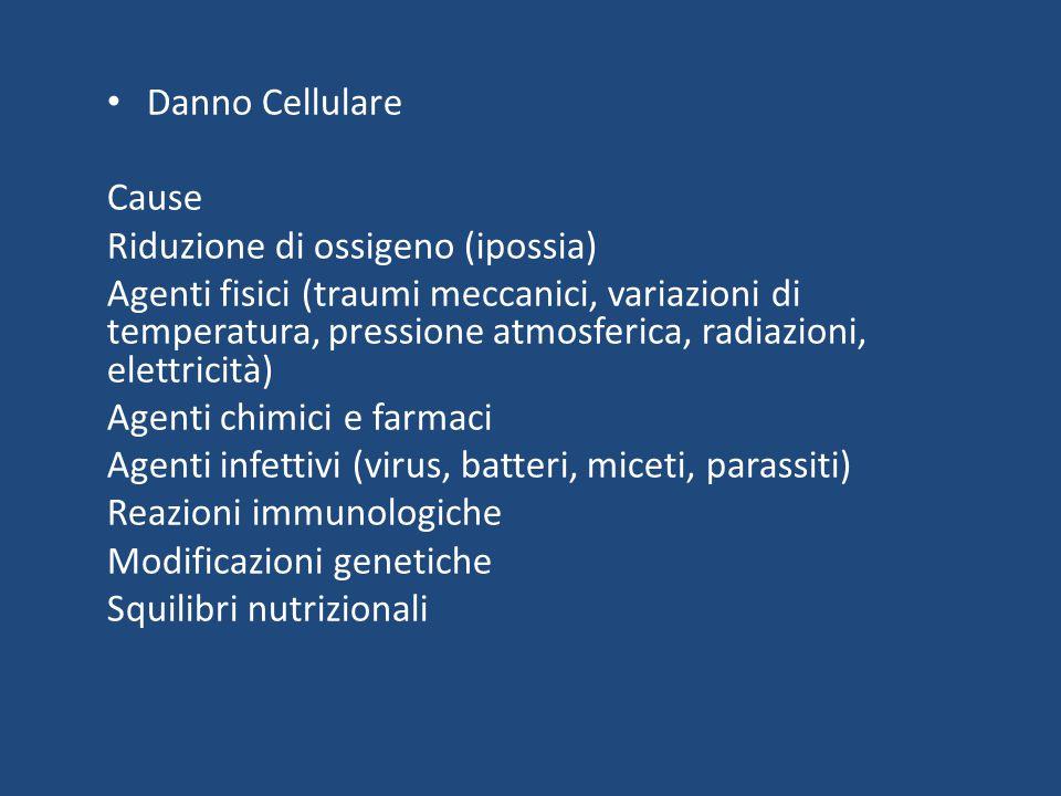Danno Cellulare Cause Riduzione di ossigeno (ipossia) Agenti fisici (traumi meccanici, variazioni di temperatura, pressione atmosferica, radiazioni, elettricità) Agenti chimici e farmaci Agenti infettivi (virus, batteri, miceti, parassiti) Reazioni immunologiche Modificazioni genetiche Squilibri nutrizionali