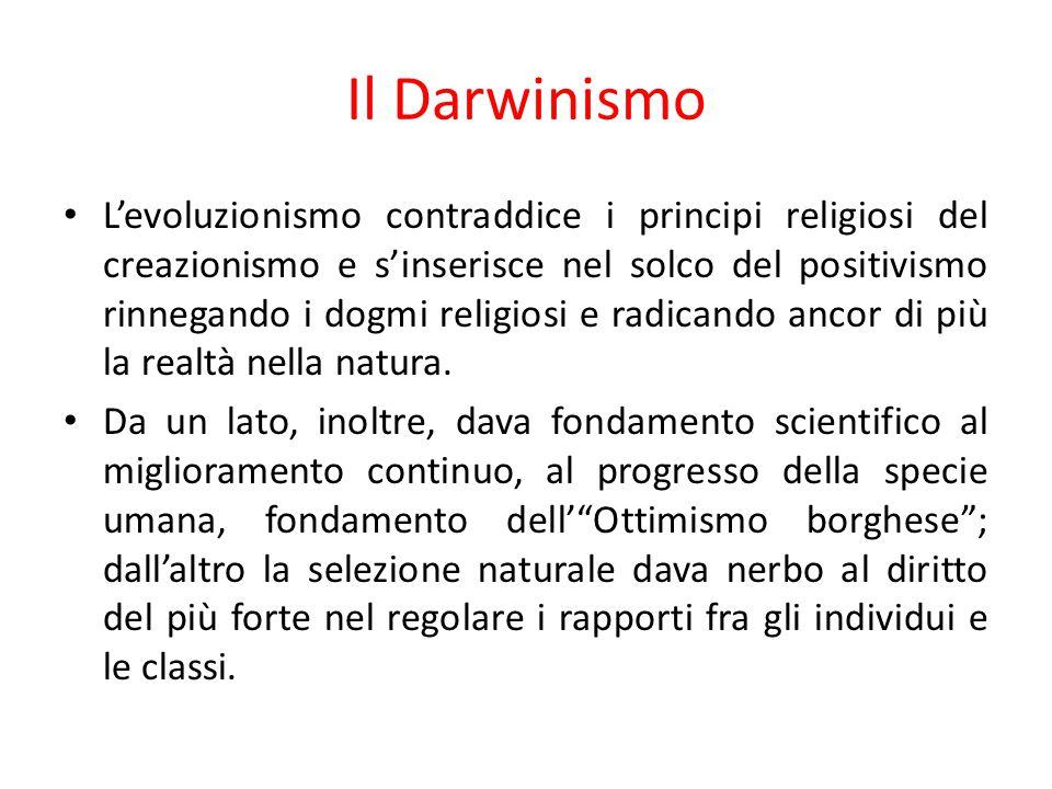 Il Darwinismo L'evoluzionismo contraddice i principi religiosi del creazionismo e s'inserisce nel solco del positivismo rinnegando i dogmi religiosi e