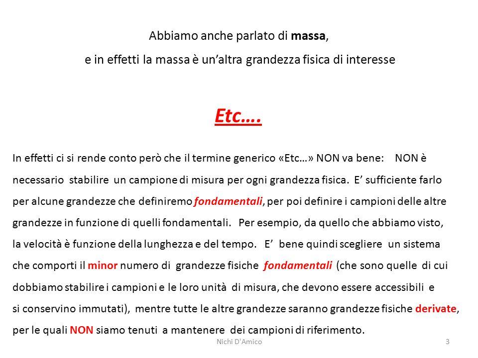 Nichi D Amico14