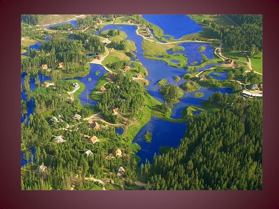 Ad Amatciems ci sono le riserve di acqua dolce naturali - stagni, laghi e ruscelli. Tutte le proprietà sono collegate a questa rete idrica naturale, i