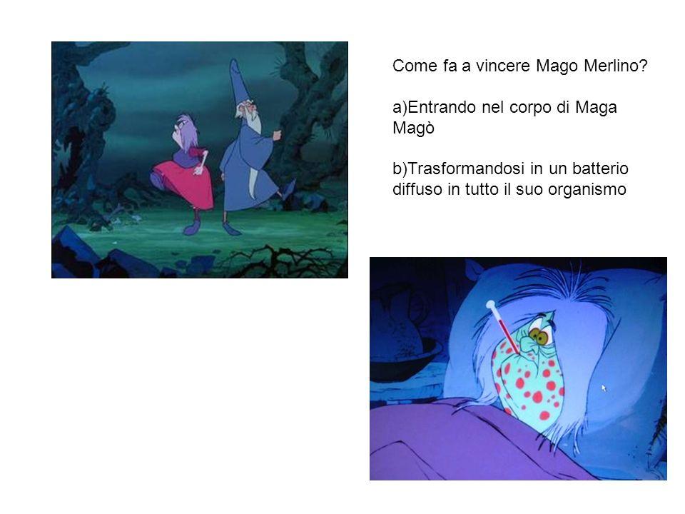 Come fa a vincere Mago Merlino.