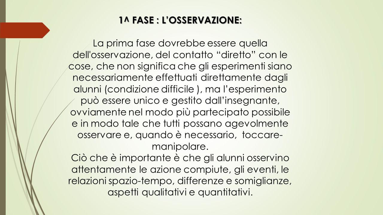 """1^ FASE : L'OSSERVAZIONE: La prima fase dovrebbe essere quella dell'osservazione, del contatto """"diretto"""" con le cose, che non significa che gli esperi"""