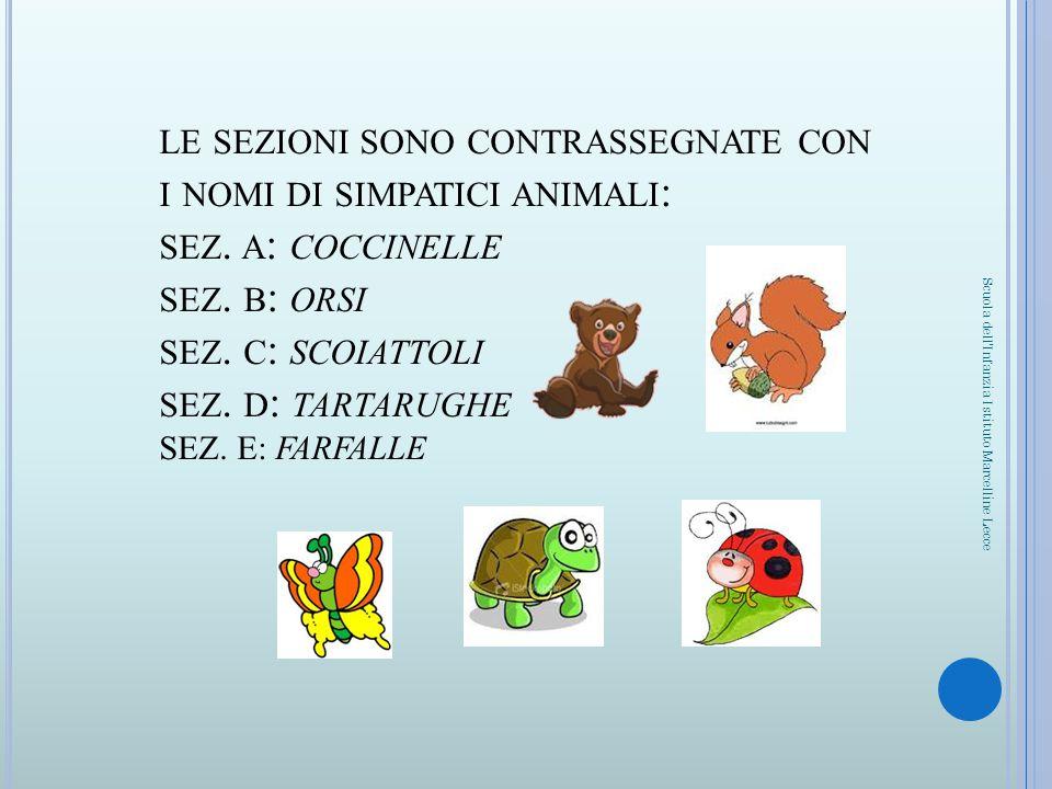 LE SEZIONI SONO CONTRASSEGNATE CON I NOMI DI SIMPATICI ANIMALI : SEZ. A : COCCINELLE SEZ. B : ORSI SEZ. C : SCOIATTOLI SEZ. D : TARTARUGHE SEZ. E: FAR