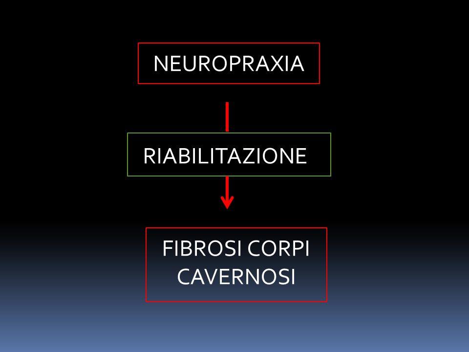 RIABILITAZIONE NEUROPRAXIA FIBROSI CORPI CAVERNOSI