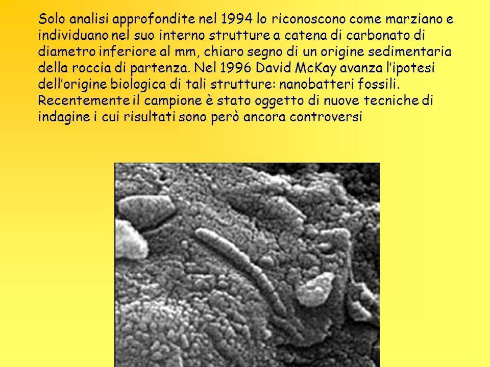 Solo analisi approfondite nel 1994 lo riconoscono come marziano e individuano nel suo interno strutture a catena di carbonato di diametro inferiore al