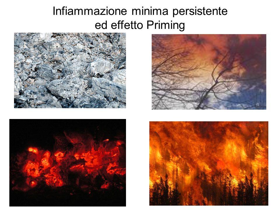 Infiammazione minima persistente ed effetto Priming