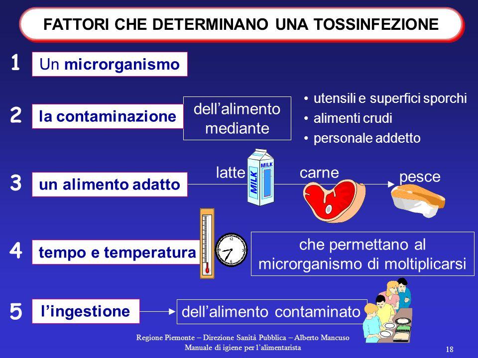 Regione Piemonte – Direzione Sanità Pubblica – Alberto Mancuso Manuale di igiene per l'alimentarista 17 la tossinfezione si verifica se l'alimento è c