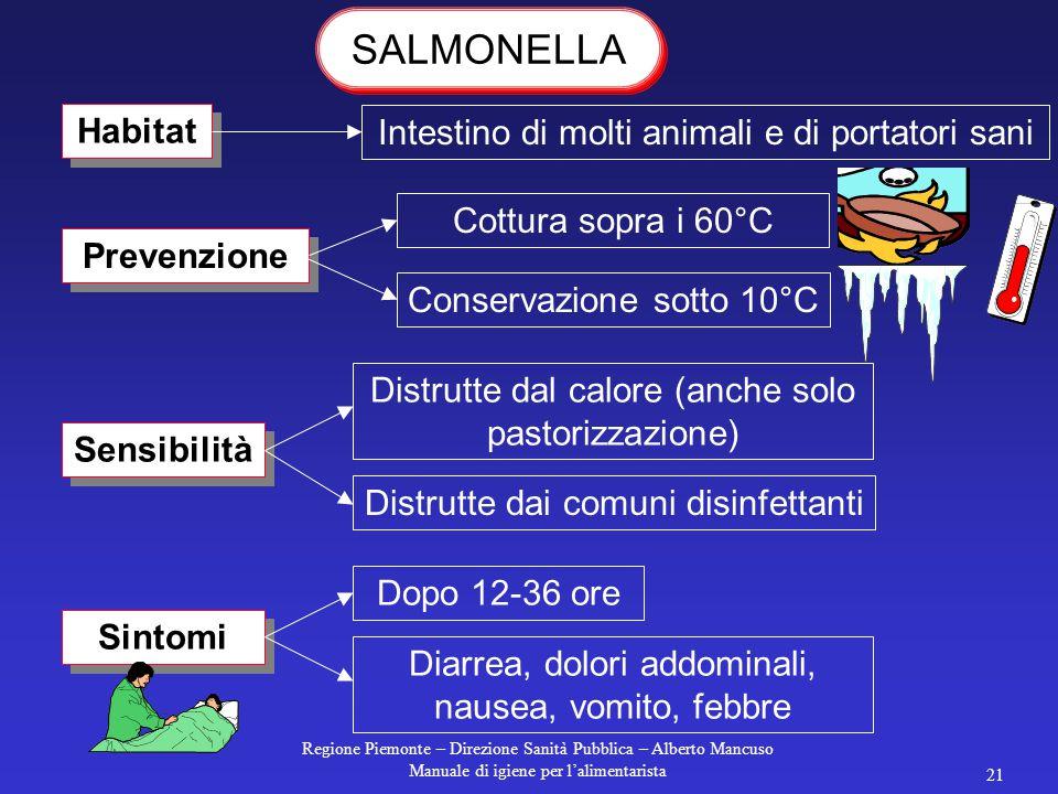 Regione Piemonte – Direzione Sanità Pubblica – Alberto Mancuso Manuale di igiene per l'alimentarista 20 Alimenti a rischio maionese tiramisu Cause sca